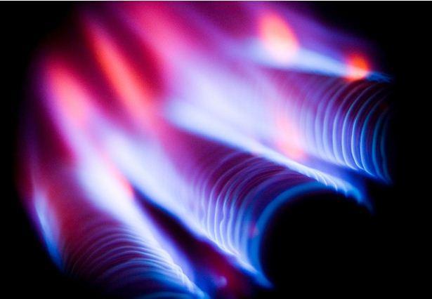 flame bleue